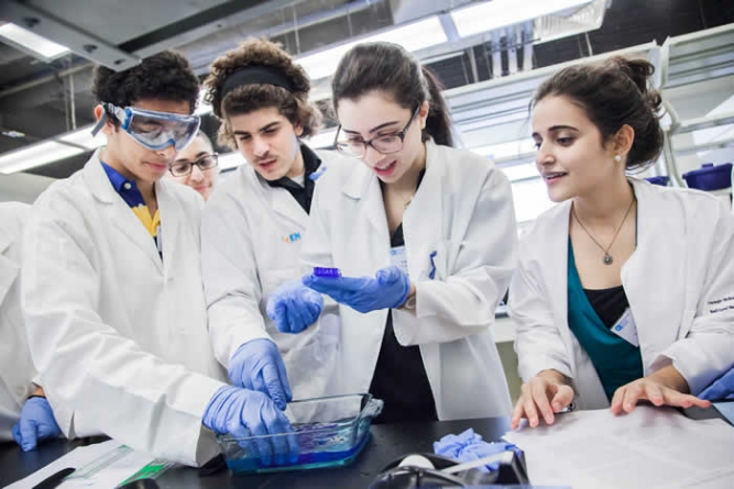 Science Students Are Always Given Importance Over Arts Students