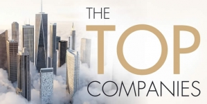 Pros and Cons for an incorporation of a Company