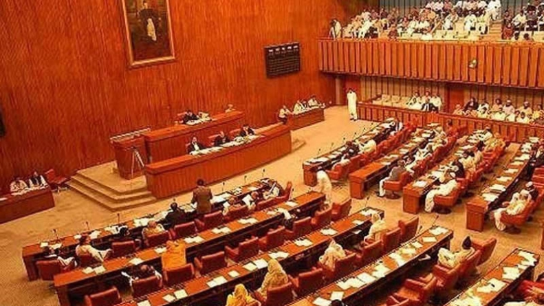 Opposition-ruled Senate Rejects two FATF Bills