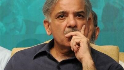 Shehbaz Calls for National Dialogue to End 'crisis'