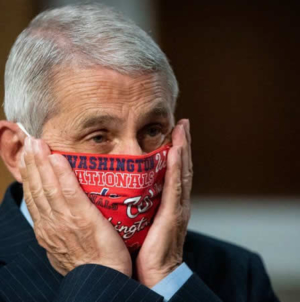 Why are people talking about Dr Anthony Fauci's emails?