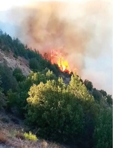 fire erupts in chitral