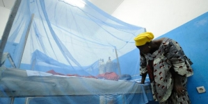 Countries Vow to All But Eradicate Malaria by 2030: WHO