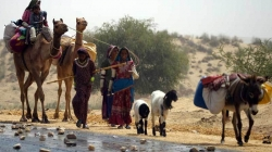 Death Haunts Drought-Hit Tharparkar as 7 More Infants Die