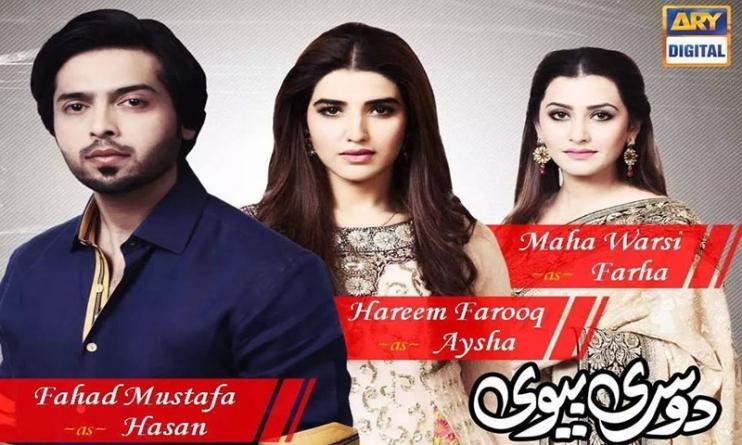 Top 10 Pakistani TV Drama Serials in 2015