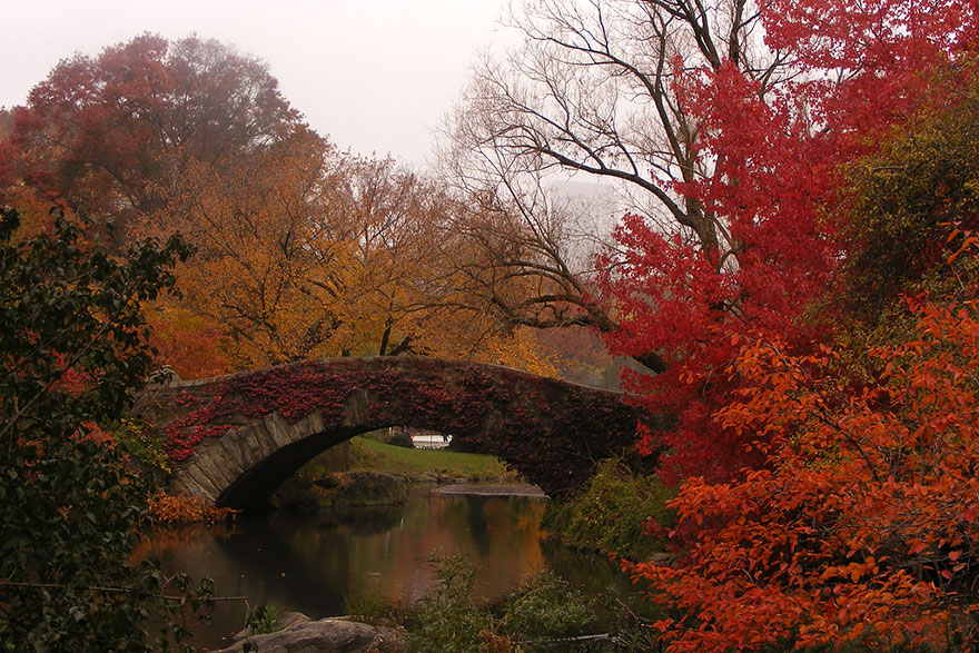 Gapstow Bridge, New York, USA