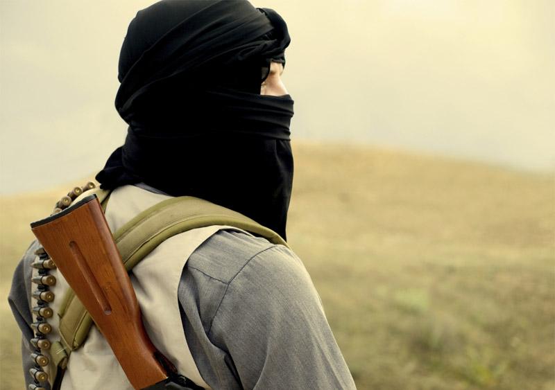 Taliban sympathizers