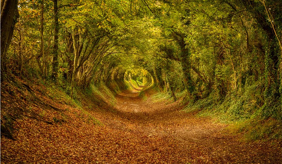 Natural the tunnel