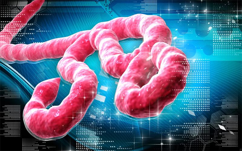 Got Ebola