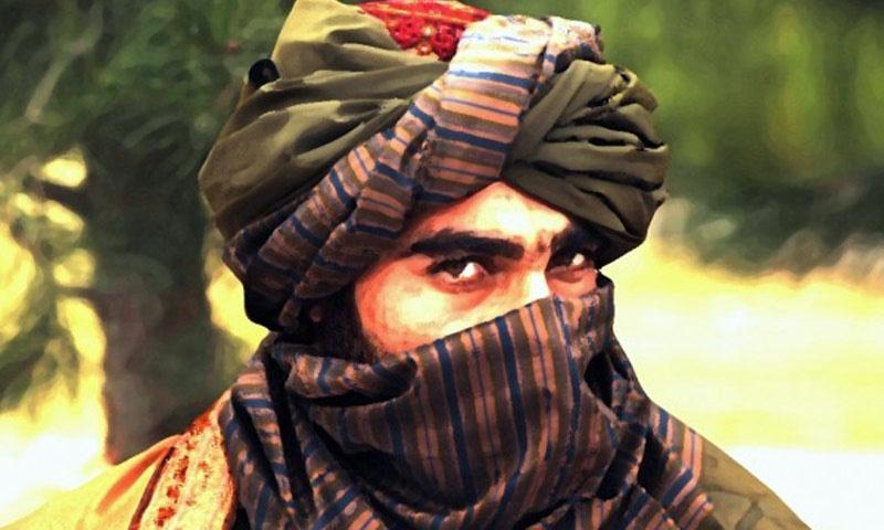 glorification of terrorists