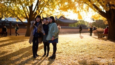 Selfie Sticks Could Bring Jail Time in Korea