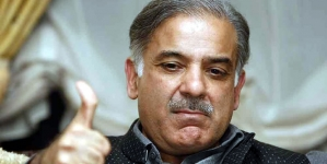 Govt ceding control over key issues: PTI leader