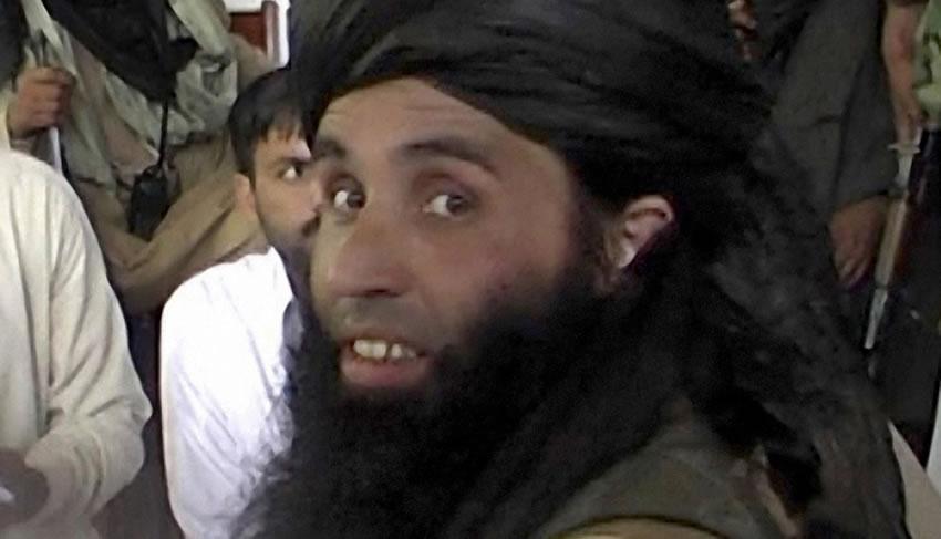 TTP Head